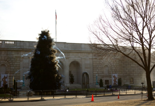 Black Christmas Tree: Explosion Event for Washington, D.C., realized in front of the Freer Gallery of Art, 2012.  Photo by Shu-Wen Lin, courtesy Cai Studio