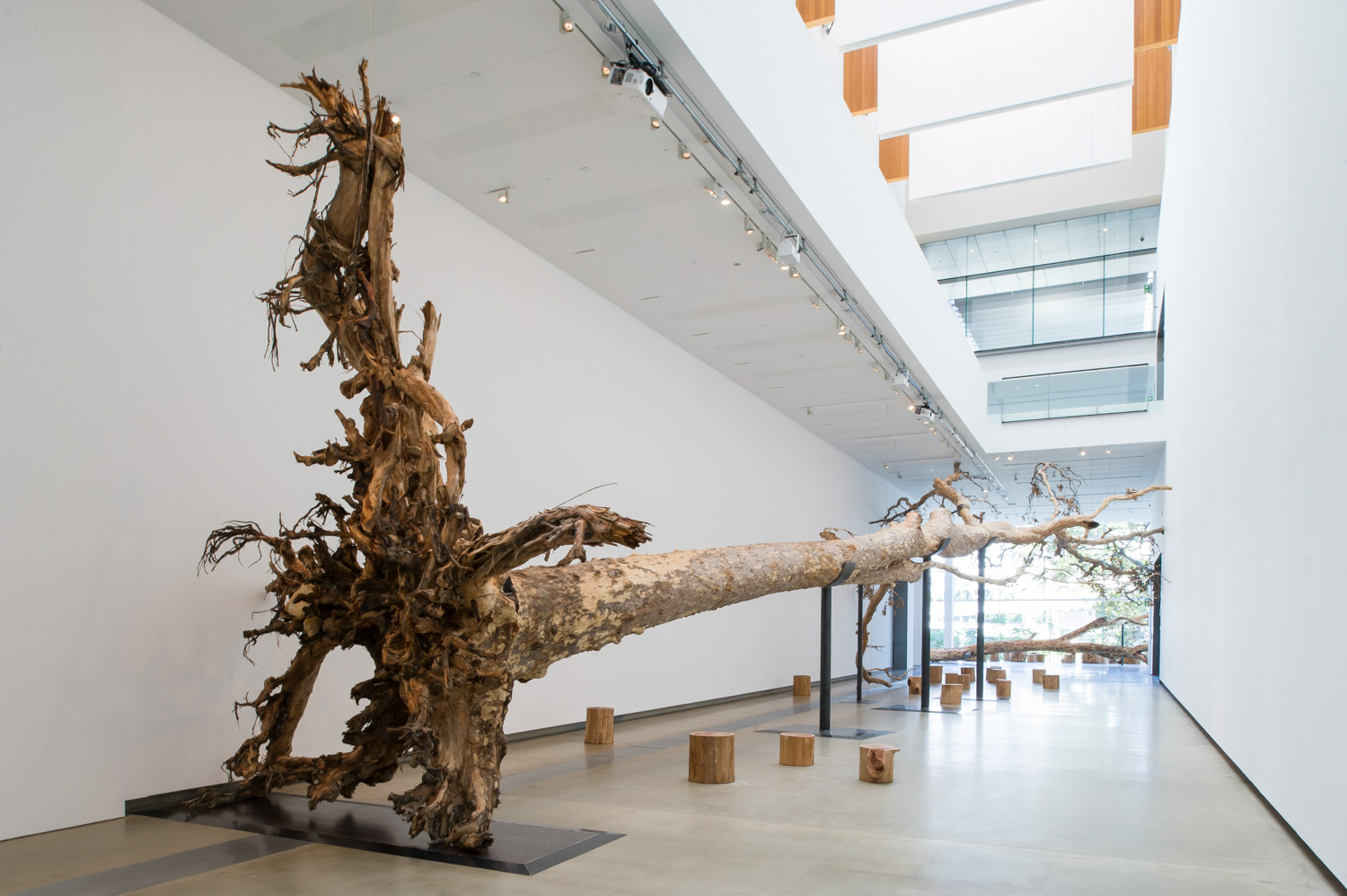 Falling back to earth cai guo qiang studio blog for Art moderne sculpture